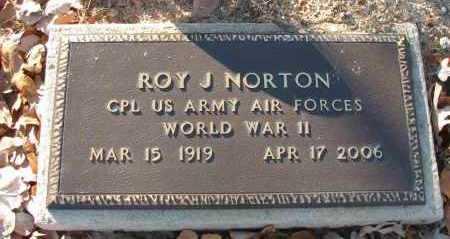 NORTON (VETERAN WWII), ROY J - Pope County, Arkansas | ROY J NORTON (VETERAN WWII) - Arkansas Gravestone Photos