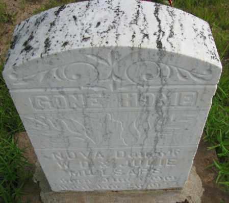 MILLSAPS, NOVA - Pope County, Arkansas | NOVA MILLSAPS - Arkansas Gravestone Photos
