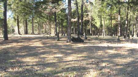 *OLD COVE CEMETERY OVERVIEW,  - Pope County, Arkansas |  *OLD COVE CEMETERY OVERVIEW - Arkansas Gravestone Photos