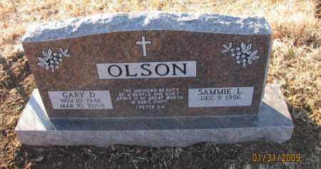OLSON, GARY D - Pope County, Arkansas   GARY D OLSON - Arkansas Gravestone Photos
