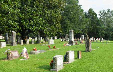 *MCFADDEN CEMETERY VIEW 2,  - Pope County, Arkansas    *MCFADDEN CEMETERY VIEW 2 - Arkansas Gravestone Photos
