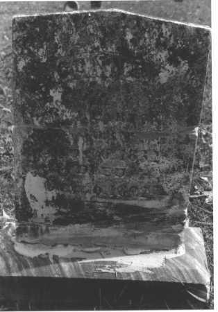 WILHITE PARTON, CONNEY - Pope County, Arkansas | CONNEY WILHITE PARTON - Arkansas Gravestone Photos