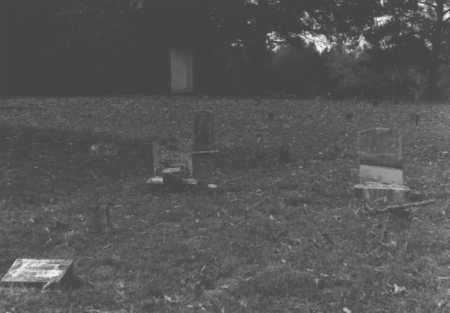 WILHITE PARTON, CONNIE - Pope County, Arkansas   CONNIE WILHITE PARTON - Arkansas Gravestone Photos