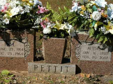 PETTIT, AUDRIA - Pope County, Arkansas | AUDRIA PETTIT - Arkansas Gravestone Photos