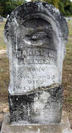 PLESS, DANIEL G - Pope County, Arkansas | DANIEL G PLESS - Arkansas Gravestone Photos