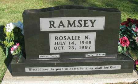 RAMSEY, ROSALIE N - Pope County, Arkansas | ROSALIE N RAMSEY - Arkansas Gravestone Photos