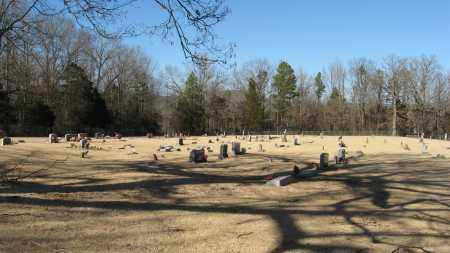 *RUSHING CEMETERY OVERVIEW,  - Pope County, Arkansas |  *RUSHING CEMETERY OVERVIEW - Arkansas Gravestone Photos