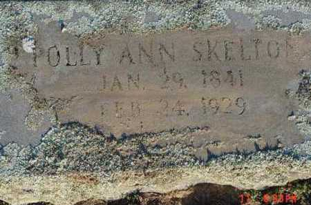 HOLLOWELL SKELTON, POLLY ANN - Pope County, Arkansas | POLLY ANN HOLLOWELL SKELTON - Arkansas Gravestone Photos