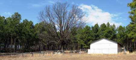 *SOLO CEMETERY OVERVIEW,  - Pope County, Arkansas |  *SOLO CEMETERY OVERVIEW - Arkansas Gravestone Photos