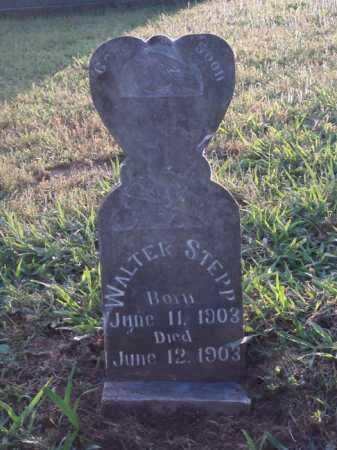 STEPP, WALTER - Pope County, Arkansas   WALTER STEPP - Arkansas Gravestone Photos