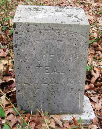TEAL, PAULINE E - Pope County, Arkansas | PAULINE E TEAL - Arkansas Gravestone Photos