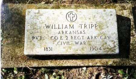 TRIPP  (VETERAN UNION), WILLIAM - Pope County, Arkansas | WILLIAM TRIPP  (VETERAN UNION) - Arkansas Gravestone Photos