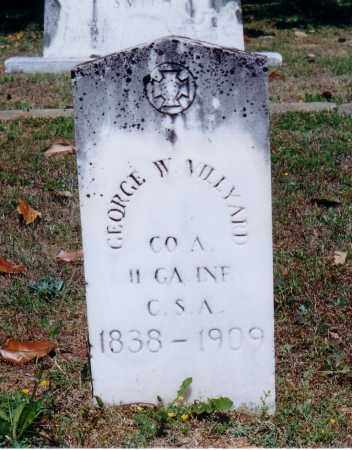 VILLYARD, GEORGE W. - Pope County, Arkansas | GEORGE W. VILLYARD - Arkansas Gravestone Photos