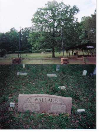 WALLACE, CATHERINE - Pope County, Arkansas | CATHERINE WALLACE - Arkansas Gravestone Photos