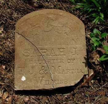 WILKINS, SARAH J - Pope County, Arkansas | SARAH J WILKINS - Arkansas Gravestone Photos