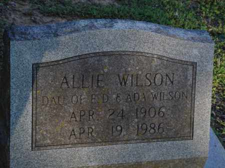 WILSON, ALLIE - Pope County, Arkansas | ALLIE WILSON - Arkansas Gravestone Photos