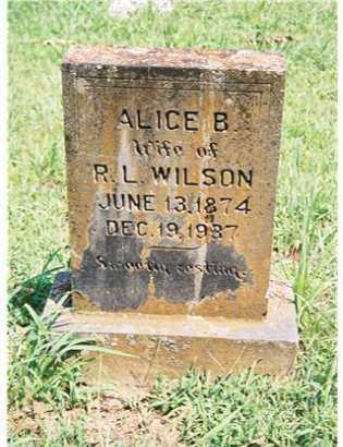 WILSON, ALICE BELL - Pope County, Arkansas | ALICE BELL WILSON - Arkansas Gravestone Photos