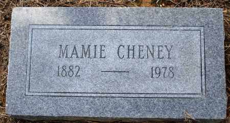 CHENEY, MAMIE - Prairie County, Arkansas | MAMIE CHENEY - Arkansas Gravestone Photos