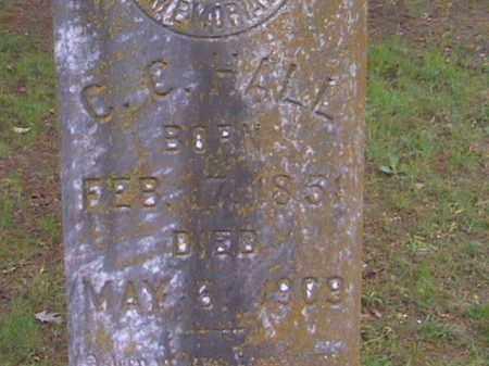 HALL, CHARLES - Prairie County, Arkansas | CHARLES HALL - Arkansas Gravestone Photos
