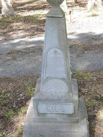 HILL, SARAH - Prairie County, Arkansas | SARAH HILL - Arkansas Gravestone Photos