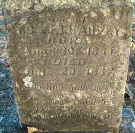 HARVEY, SON - Pulaski County, Arkansas | SON HARVEY - Arkansas Gravestone Photos