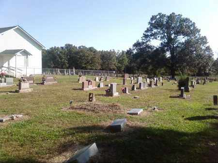 *OVERVIEW,  - Pulaski County, Arkansas |  *OVERVIEW - Arkansas Gravestone Photos