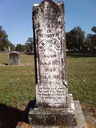 WILSON, HUE B. - Pulaski County, Arkansas | HUE B. WILSON - Arkansas Gravestone Photos