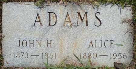 ADAMS, ALICE - Pulaski County, Arkansas | ALICE ADAMS - Arkansas Gravestone Photos