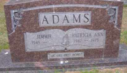 ADAMS, PATRICIA ANN - Pulaski County, Arkansas | PATRICIA ANN ADAMS - Arkansas Gravestone Photos