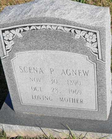 AGNEW, SCENA P - Pulaski County, Arkansas | SCENA P AGNEW - Arkansas Gravestone Photos