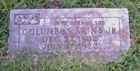 AKINS, JR., COLUMBUS - Pulaski County, Arkansas   COLUMBUS AKINS, JR. - Arkansas Gravestone Photos