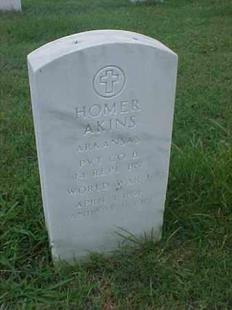 AKINS (VETERAN WWI), HOMER - Pulaski County, Arkansas | HOMER AKINS (VETERAN WWI) - Arkansas Gravestone Photos