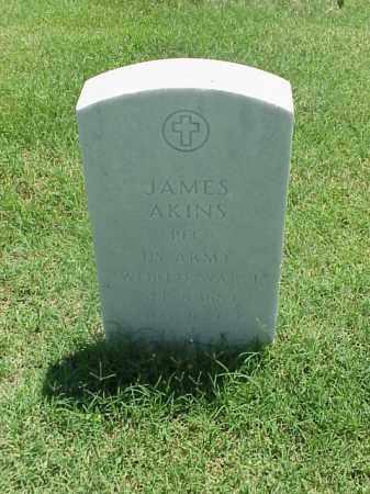 AKINS (VETERAN WWI), JAMES - Pulaski County, Arkansas | JAMES AKINS (VETERAN WWI) - Arkansas Gravestone Photos
