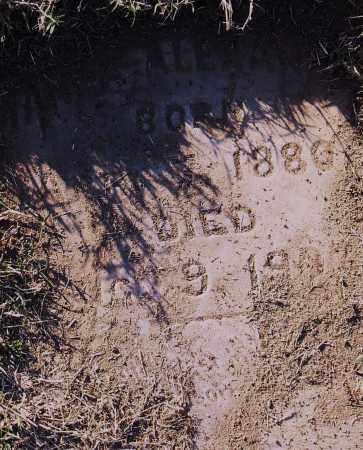 ALENAN, HANNA - Pulaski County, Arkansas   HANNA ALENAN - Arkansas Gravestone Photos