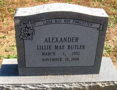 ALEXANDER, LILLIE MAE - Pulaski County, Arkansas | LILLIE MAE ALEXANDER - Arkansas Gravestone Photos