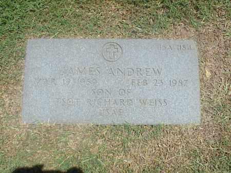 ANDREW, JAMES - Pulaski County, Arkansas | JAMES ANDREW - Arkansas Gravestone Photos