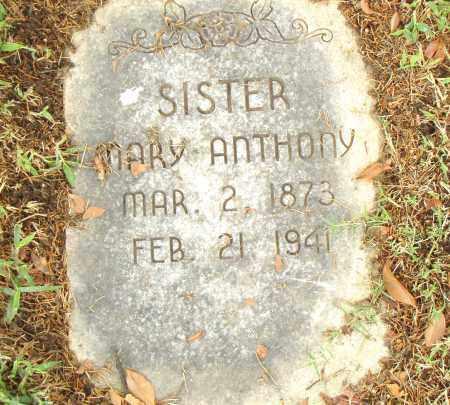 ANTHONY, MARY - Pulaski County, Arkansas | MARY ANTHONY - Arkansas Gravestone Photos