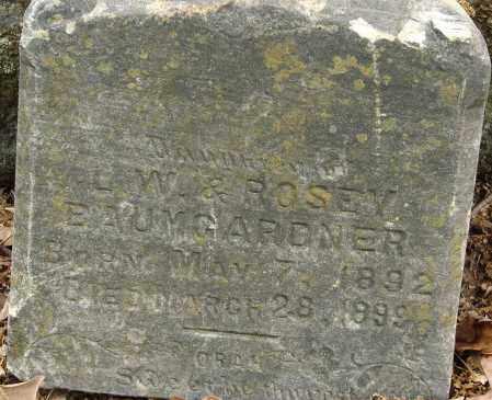 BAUMGARDNER, DAUGHTER - Pulaski County, Arkansas | DAUGHTER BAUMGARDNER - Arkansas Gravestone Photos