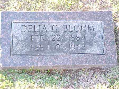 BLOOM, DELIA G - Pulaski County, Arkansas   DELIA G BLOOM - Arkansas Gravestone Photos