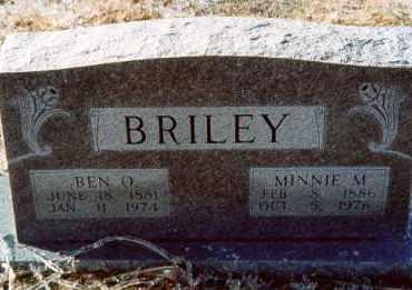 BRILEY, MINNIE - Pulaski County, Arkansas | MINNIE BRILEY - Arkansas Gravestone Photos