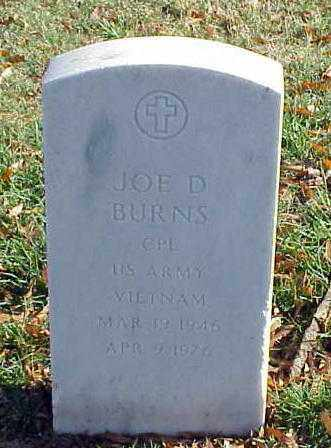 BURNS (VETERAN VIET), JOE D - Pulaski County, Arkansas | JOE D BURNS (VETERAN VIET) - Arkansas Gravestone Photos