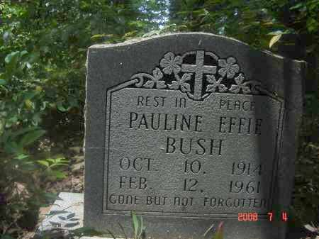 BUSH, PAULIN EFFIE - Pulaski County, Arkansas | PAULIN EFFIE BUSH - Arkansas Gravestone Photos