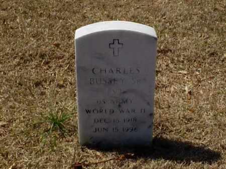 BUSSEY, SR (VETERAN WWII), CHARLES - Pulaski County, Arkansas | CHARLES BUSSEY, SR (VETERAN WWII) - Arkansas Gravestone Photos