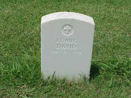 DAVID (VETERAN UNION), LOMIG - Pulaski County, Arkansas | LOMIG DAVID (VETERAN UNION) - Arkansas Gravestone Photos