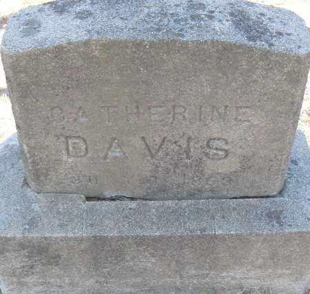 DAVIS, CATHERINE - Pulaski County, Arkansas   CATHERINE DAVIS - Arkansas Gravestone Photos