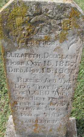 DOUGLASS, ELIZABETH - Pulaski County, Arkansas | ELIZABETH DOUGLASS - Arkansas Gravestone Photos