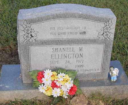 ELLINGTON, SHANELL M. - Pulaski County, Arkansas | SHANELL M. ELLINGTON - Arkansas Gravestone Photos