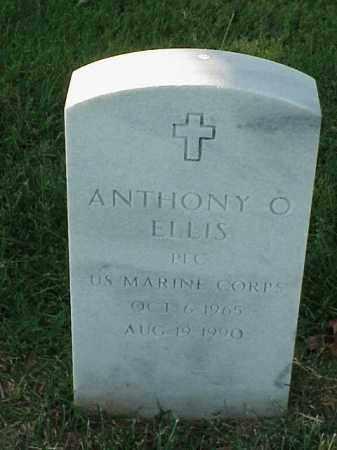ELLIS (VETERAN), ANTHONY O - Pulaski County, Arkansas | ANTHONY O ELLIS (VETERAN) - Arkansas Gravestone Photos