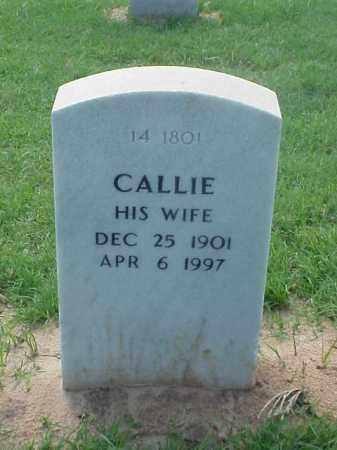FLOYD, CALLIE - Pulaski County, Arkansas   CALLIE FLOYD - Arkansas Gravestone Photos