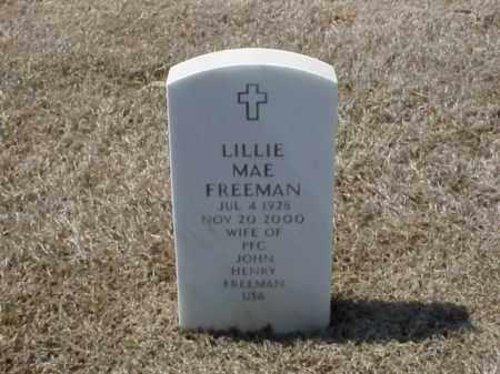 FREEMAN, LILLIE MAE - Pulaski County, Arkansas | LILLIE MAE FREEMAN - Arkansas Gravestone Photos